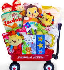 Baby Einstein Wild Wilderness Gift Basket