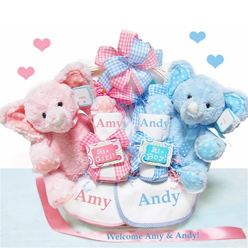 Baby Gift For Twins : Twins baby gift basket myretrobaby
